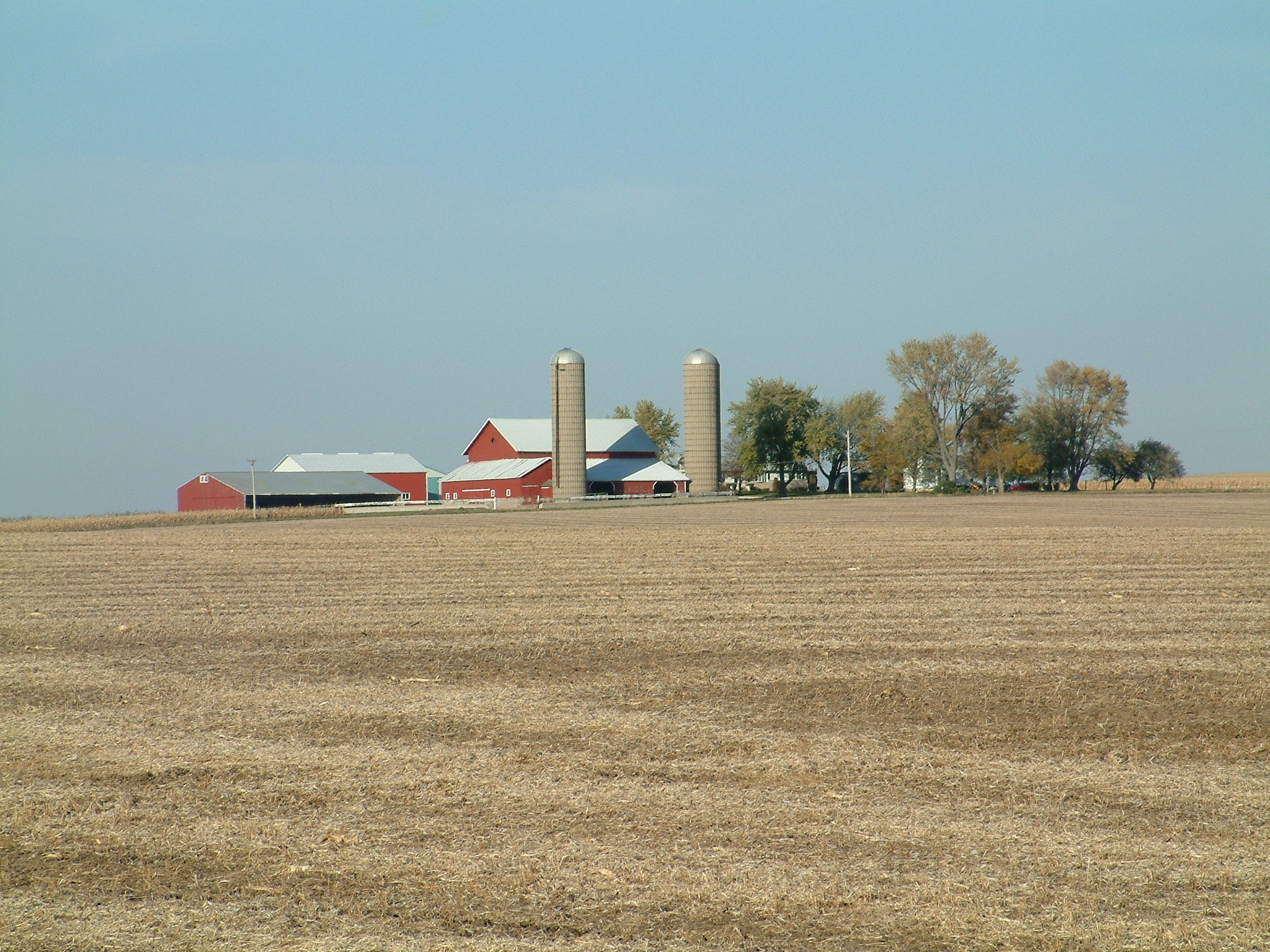 farm1.jpg - Farm in Northern Illinois