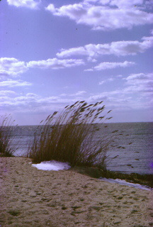 Islip beach Long Island New York
