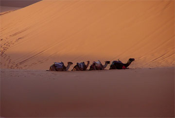 Morocco - A collection of Morocco images at Pics4Learning.